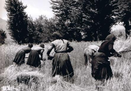 Women of Molise
