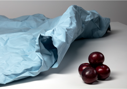 Soft Object 2: Paper and Plums