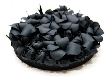 Black Flora (number 8)