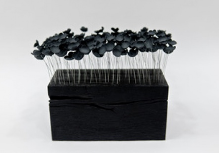 Black Sakura