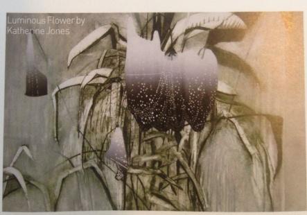 Katie Jones: The Terrarium Drawn - The Marylebone Journal