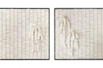 In collaboration with Valeria Nascimento - Amaranthus 2