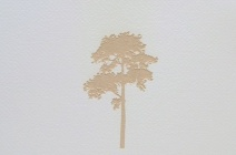 Rachel Wickremer | 'Beech' (Tree series) | £ 300