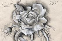 Ricardo Cinalli | Les Fleurs du Mal I | £ 500