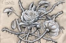 Ricardo Cinalli | Les Fleurs du Mal III | £ 500