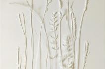 Rachel Shaw Ashton | White Grasses / Yarrow | £ 390