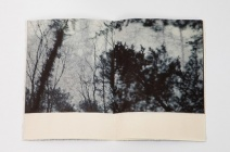Unsent Letter by Danielle Creenaune, has been awarded the Intaglio Printmaker Prize 2012